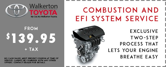 Combustion & EFI System Service